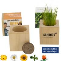 Plantenpot - zonnebloem - kruiden - Kweeksets