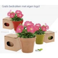 Biodegradable bloempotje